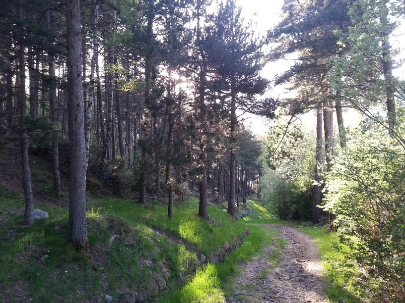 Andorra Dancing For Joy - Where is andorra